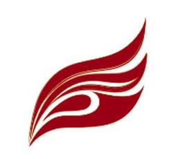 深圳市银飞电子科技有限公司