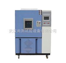 SC/QL-100臭氧老化试验箱