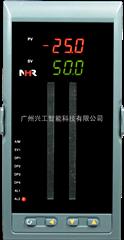 NHR-5310L智能PID调节器NHR-5310L-55/X-K1/0/2/X/1P(24)-A