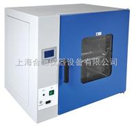 DHG-9075A电热干燥箱 实验室烘箱 300度工业烘箱