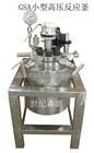 100ML磁力搅拌微型高压反应釜