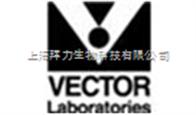 vector公司