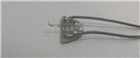 热探针-AFM探针/原子力探针/原子力显微镜探针( CLST-MT)