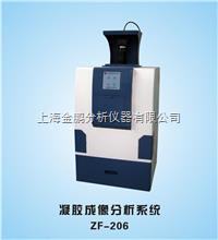 ZF-206全自动凝胶成像分析系统