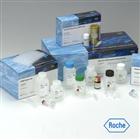 人β干扰素(IFN-β/IFNB)ELISA试剂盒