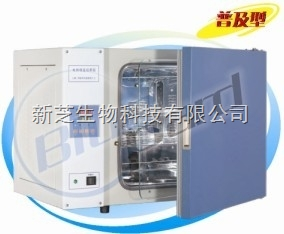 上海一恒电热恒温培养箱DHP-9162B(出口型)