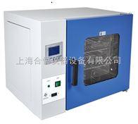 台式300度电热恒温鼓风干燥箱