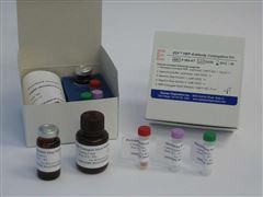豬肝細胞生長因子(HGF)ELISA檢測試劑盒