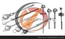 化工廠耐磨熱電偶
