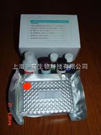 牛双调蛋白(AREG)ELISA试剂盒