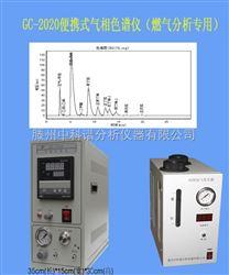 GC-2020二甲醚检测仪性能特点