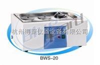 BWS-20上海一恒恒温水槽与水浴锅(两用)BWS-20