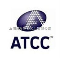 ATCC16404 黑曲霉