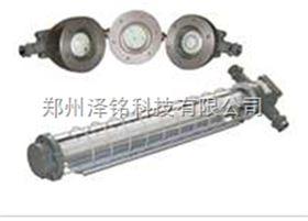 DGS30/127L(D)型礦用隔爆型LED巷道燈