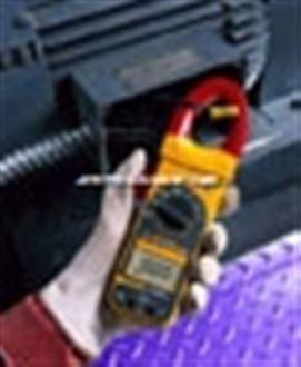 美国福禄克FLUKE 318交直流钳表
