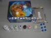 禽传染性喉气管炎抗原(ILT -Ag)ELISA试剂盒