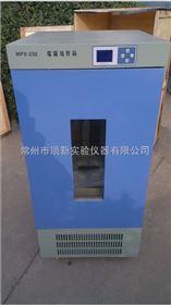 MPX-250數顯霉菌培養箱