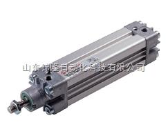 ISO/VDMA 型材气缸 PRA/182000,PRA/182000/M