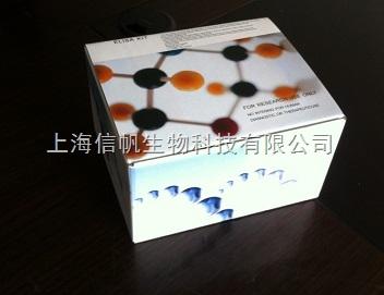 大鼠β2-微球蛋白(β2-MG) ELISA试剂盒