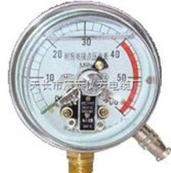 耐振压力表/抗震压力表