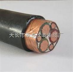 BPYJVP变频电缆 3*10+3*1.5