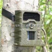 JC15-SG-008紅外高清自動夜視監測儀