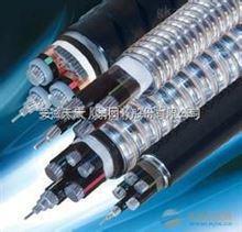 礦物絕緣(MI)加熱電纜