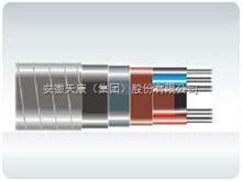 集膚效應電伴熱電纜