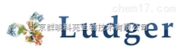 LT-KAA-VP24免疫球蛋白IgG糖基化检测/分析试剂盒——Ludger品牌