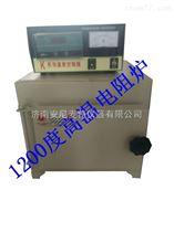 AT-DZL*电阻炉 高温电阻炉 箱式电阻炉