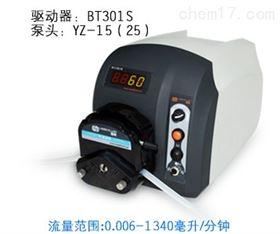 BT301S蠕动泵