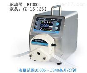 BT300L蠕动泵