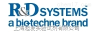 R&D SYSTEMS代理