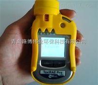 进口美国华瑞可燃气体检测仪PGM-1820