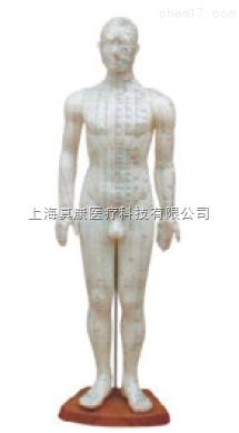 男性针灸模型(pvc树脂材质)