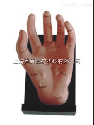 保健手模型(PVC树脂材质)