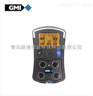 GMI PS500外壳结实耐用英国GMI PS500手持式复合气体检测仪