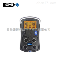 外壳结实耐用英国GMI PS500手持式复合气体检测仪