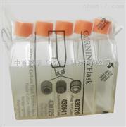 康宁Corning 75cm2细胞培养瓶430720