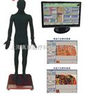 多媒體安摩點穴電子人體模型(針灸推拿)