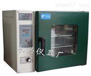 厂家直销小型数显电热鼓风干燥箱