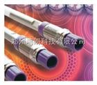 74204-014001Accucore C8 4um 10*4.0mm 保護柱