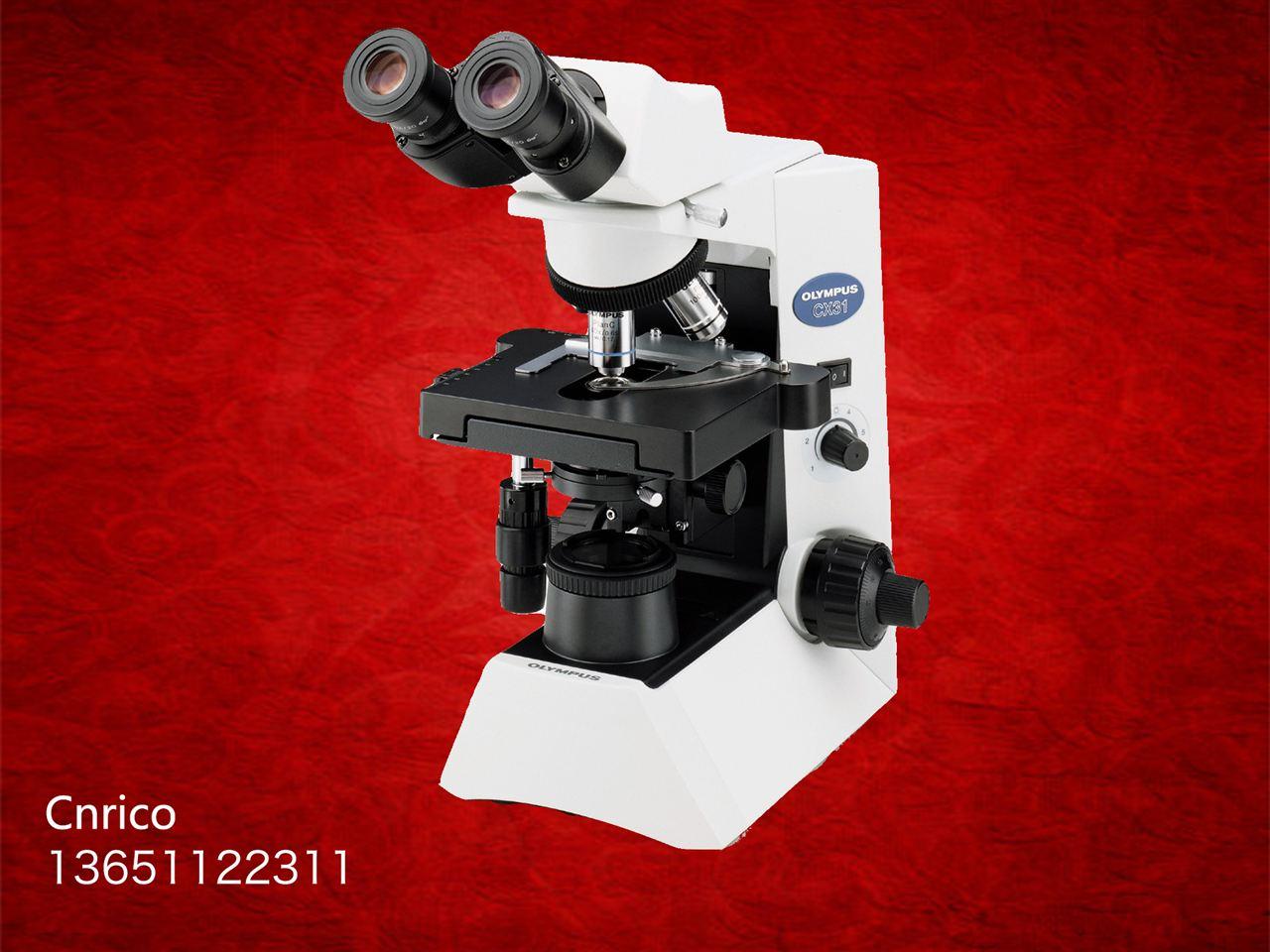 cx31显微镜使用步骤