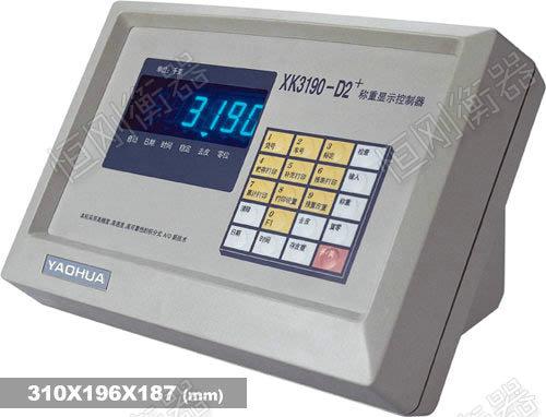 XK3190—D2+