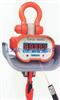 OCS电子吊秤,5吨电子吊秤, 电子吊秤价钱