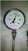 WSS雙金屬溫度計