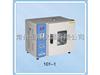 202-00 恒温型干燥箱