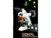 BK-FL荧光显微镜