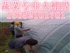 塘沽供应天蓝色大棚膜(2米到20米)大棚膜,塘沽大棚膜厂家直销