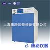 上海二氧化碳培养箱